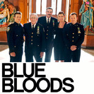 Blue Bloods: The Job
